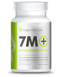 Epigenetic Labs - 7M+ (60caps)