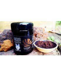Nyishar - Wild Siberian Chaga Dual-Extract Powder 10:1 (100g)