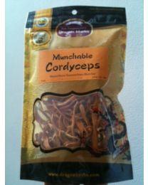 Dragon Herbs Munchable Cordyceps 2oz